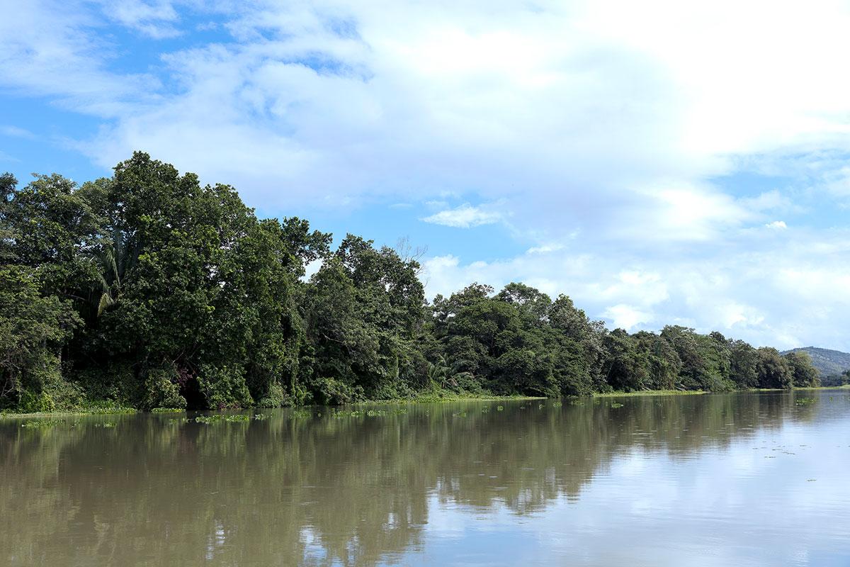 Océanos, las políticas a favor de su protección - Canal de Panamá - El Faro