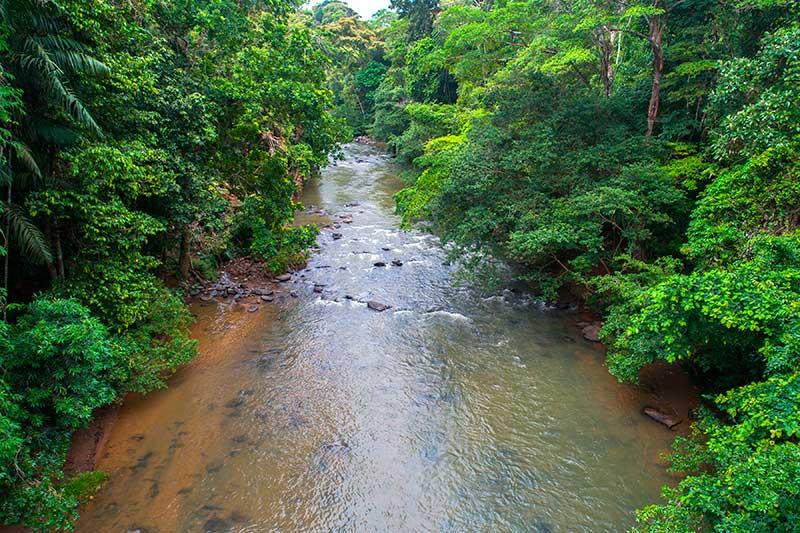 Serie de documentales - Donde nace el agua - Canal de Panamá
