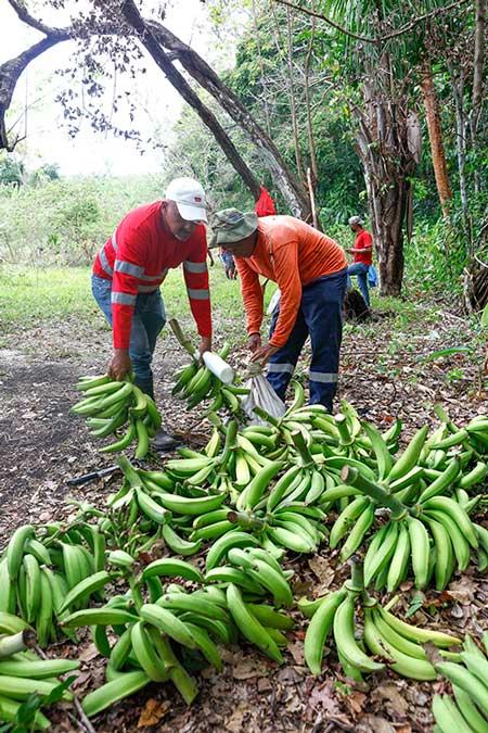 Heriberto Álvarez - Un programa ambiental que cambia vidas - El Faro - Canal de Panamá