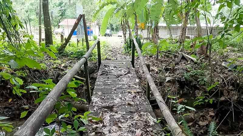 Renovación estratégica con un toque verde - El Faro - Canal de Panamá